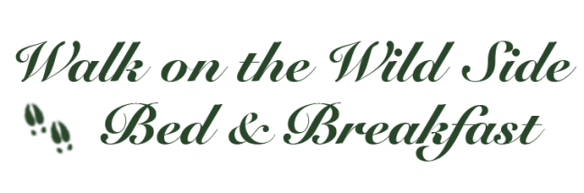 Walk on the Wild Side Bed & Breakfast