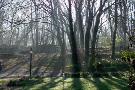 Fallen Tree Farm B & B