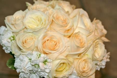 Wedding Planning 2