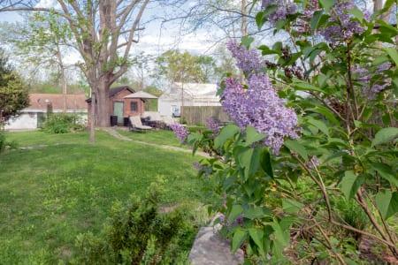 Our Garden