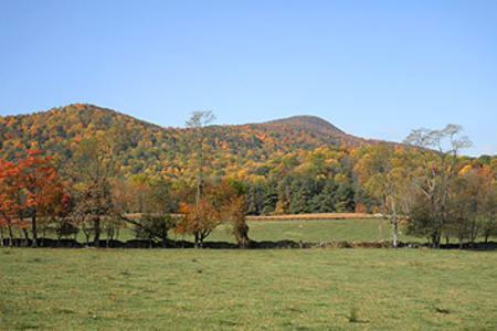 Caledonia Farm