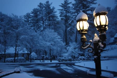 Winter at Brookside