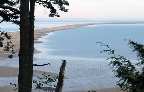 Day 5: Dungeness Spit and National Wildlife Refuge (15 minutes fromSea Cliff Gardens)