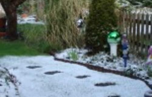 Snow again!