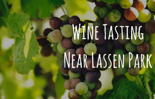 Wine Tasting Near Lassen Park