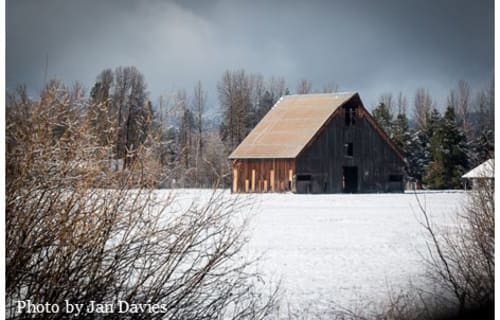 Help Feather River Land Trust Save the Historic Olsen Barn