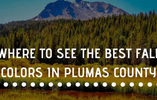 Where to See the Best Fall Colors In Plumas County