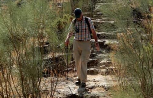 Walking the Serrania de Ronda
