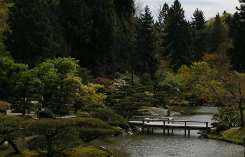 Our Favorite Seattle Gardens
