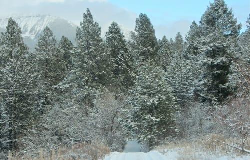 Bear Spirit Lodge Bed & Breakfast near St. Ignatius, MT. Enjoy