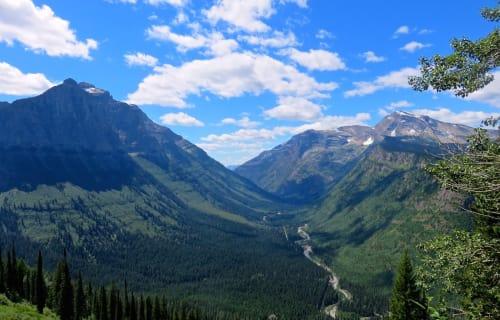 Celebrate National Park Service 100th Birthday at Bear Spirit Lodge B&B