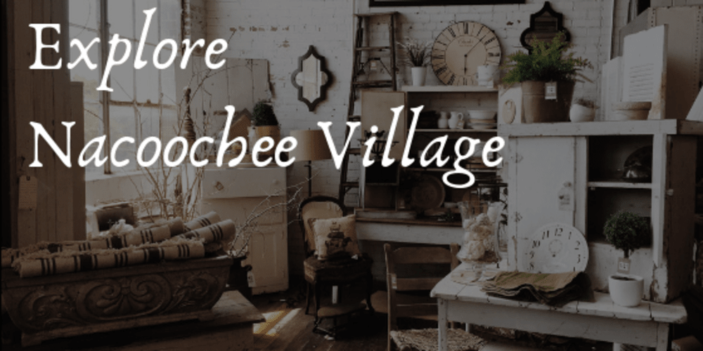 Explore Nacoochee Village