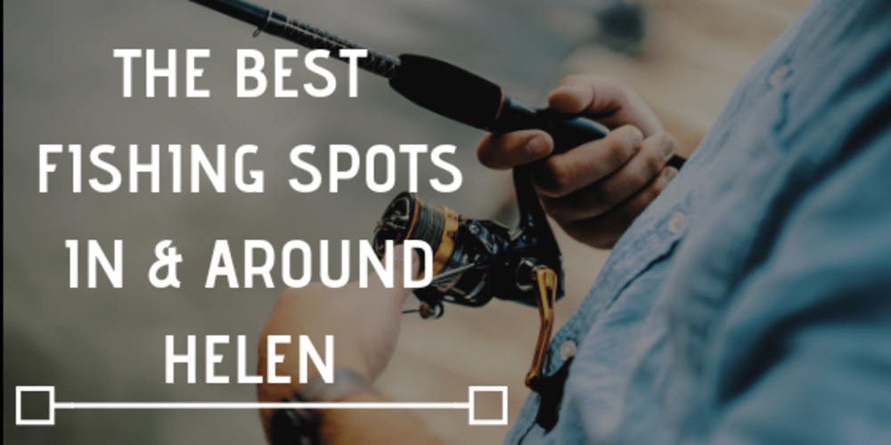The Best Fishing Spots In & Around Helen