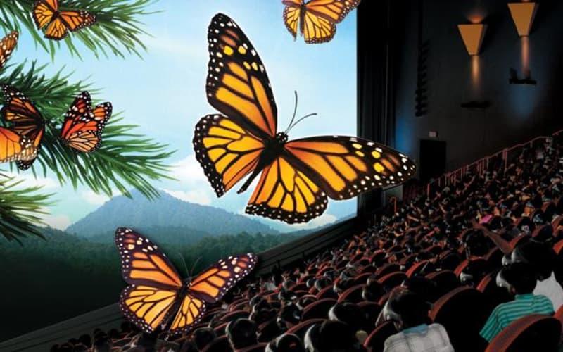 Florida's Best Movie Theatre Experience