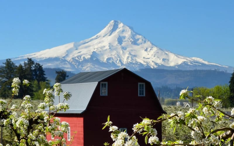 5 Reasons To Love Hood River Valley