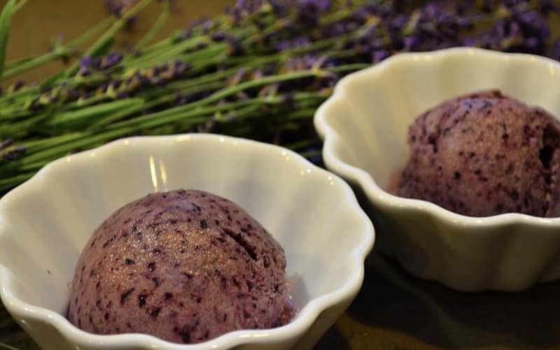 Lavender Blueberry Sorbet