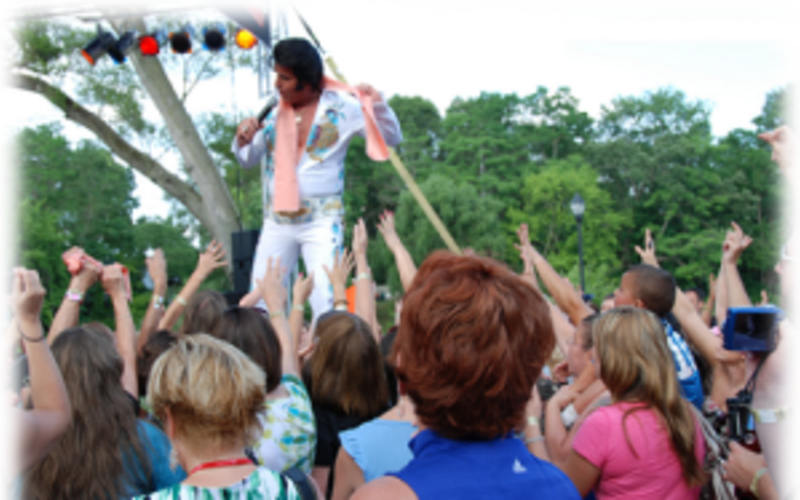 Going to the Michigan Elvis Fest 2016?
