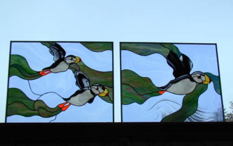 Kachemak Bay Shorebird Festival