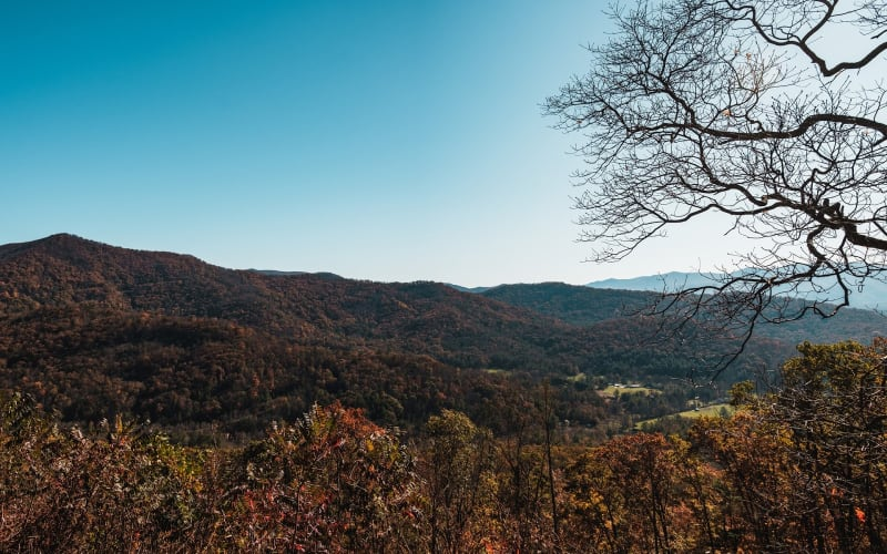 The Most Beautiful Places to See Fall Color in Asheville, NC