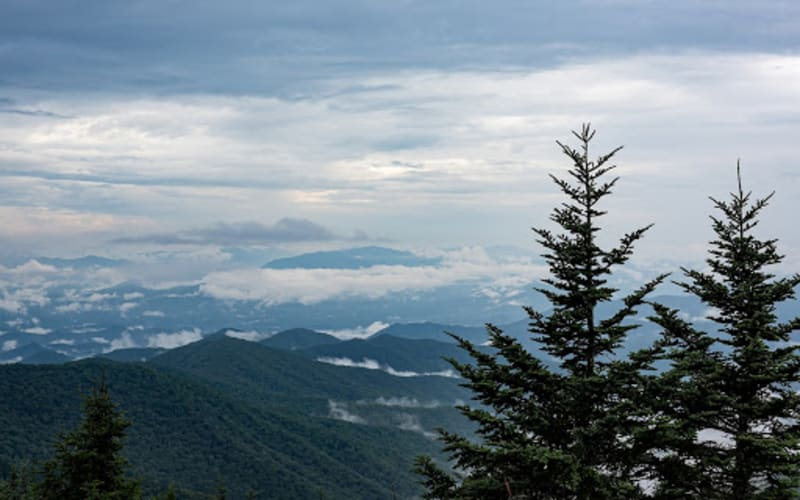 The Ultimate Asheville Day Trip to the Great Smoky Mountains