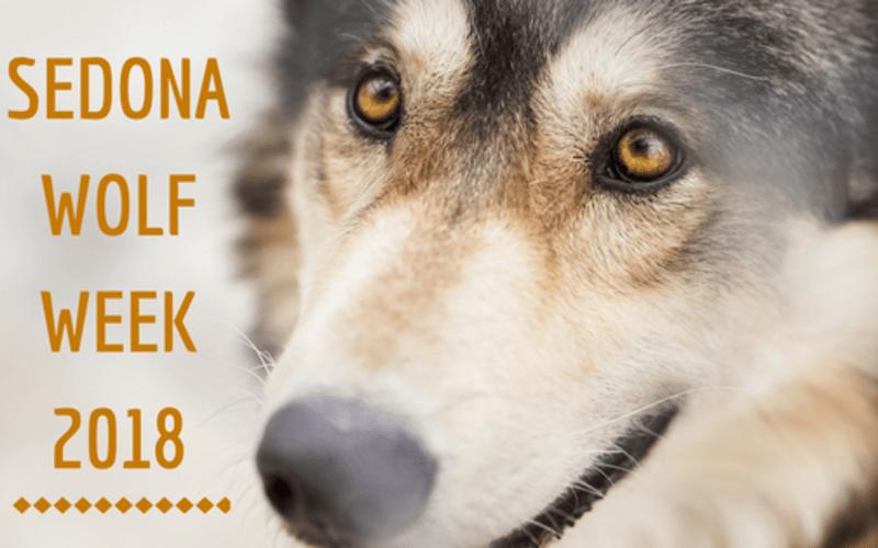 Sedona Wolf Week 2018