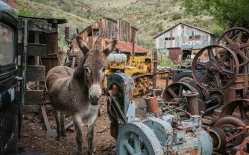 Explore the History of the West in Jerome