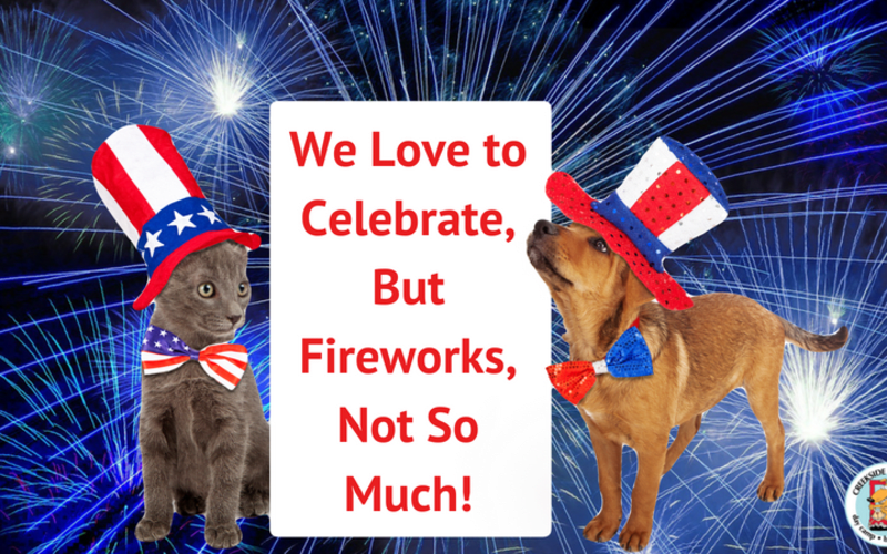 Fireworks and Your Pets: How to Keep Them Safe