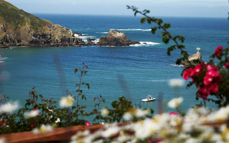 5 Romantic Things To Do on the Mendocino Coast