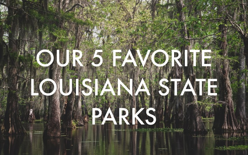 Our 5 Favorite Louisiana State Parks