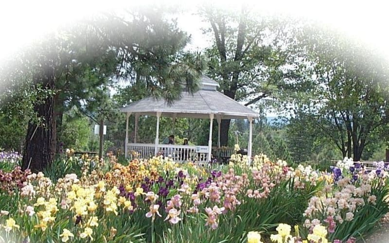 Local things to do for an enchanting Mother's Day weekend...