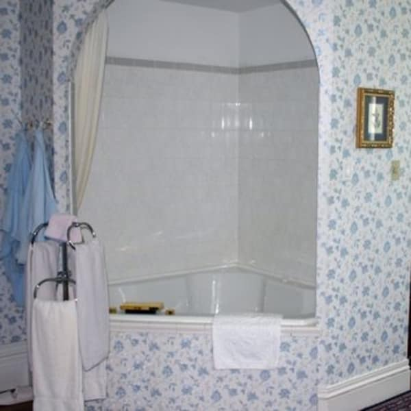 Jacuzzi and Shower in Southern Charm Room