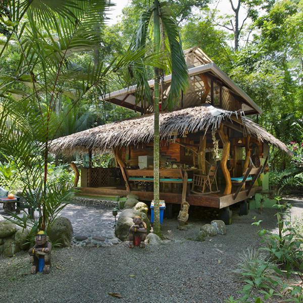 Dream Palm House - House & Garden