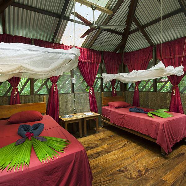 Dream Palm House - Sleeping Room (upstairs)