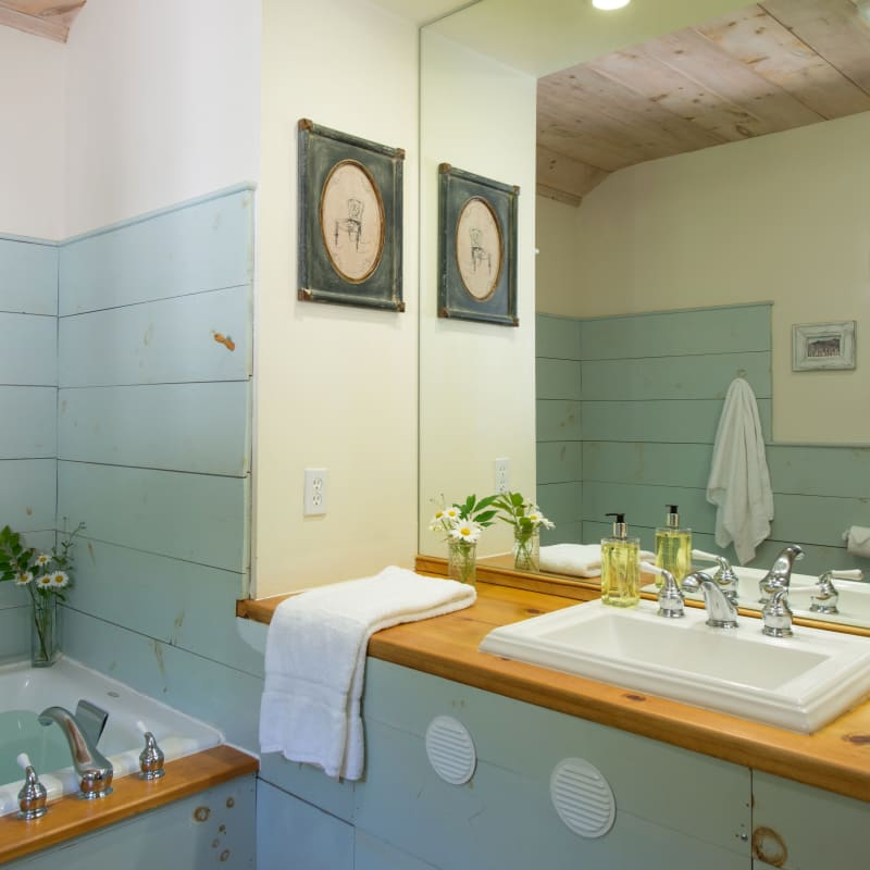Bathroom sink and mirror with blue paneled walls.