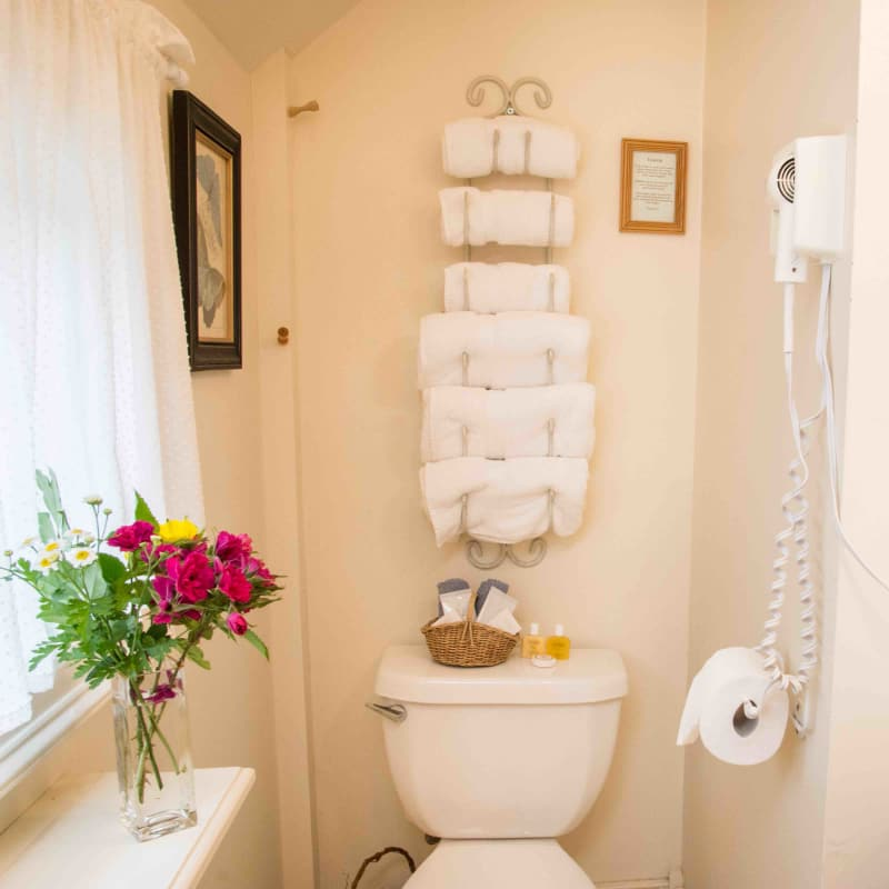 Photo of bathroom in King Mini Suite