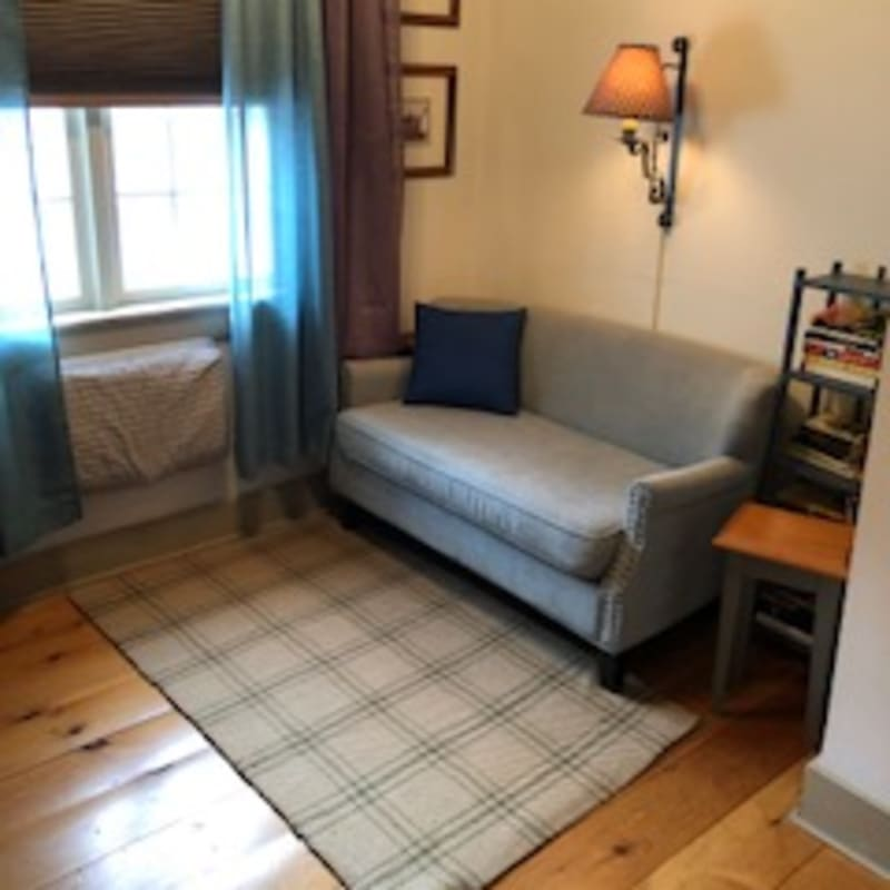 Small blue settee and personal library near window.