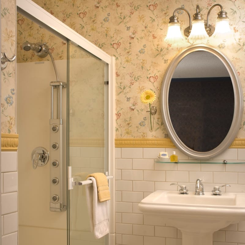 Bathroom in the Master Bedroom Suite