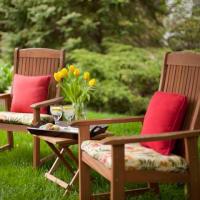 Backyard Solitude