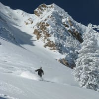 Powder Skiing under Mt, Ogden Snow Basin