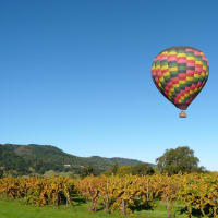 Baloon in Sonoma