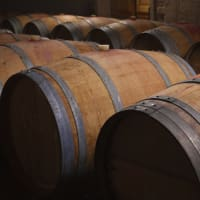 Barrel Tasting in March