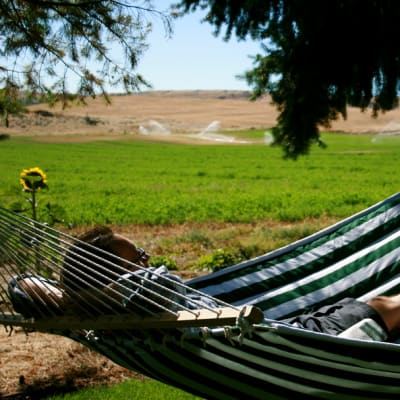 Relaxing hammocks: Historic Balch Hotel, centrally located on the columbia river gorge in Dufur, OR