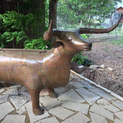 Longhorn BBQ grill