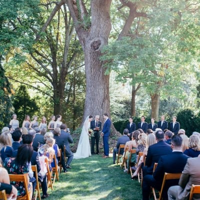 A beautiful Wedding under one of our old growth trees