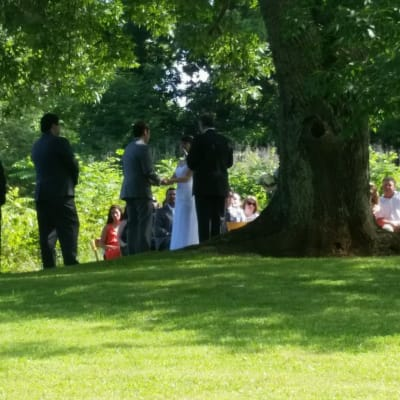 Picture of Wedding Ceremony by pond under 200 year old White Ash Tree