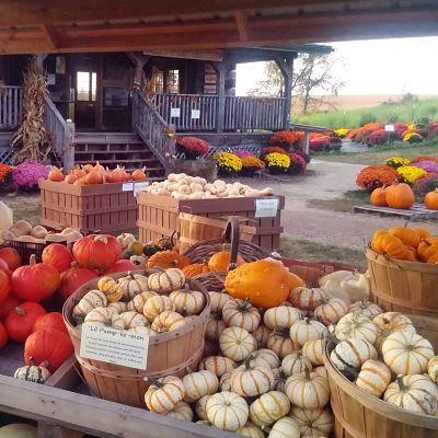 Sutter's Ridge Farm