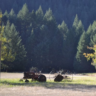 outdoor field with tractor