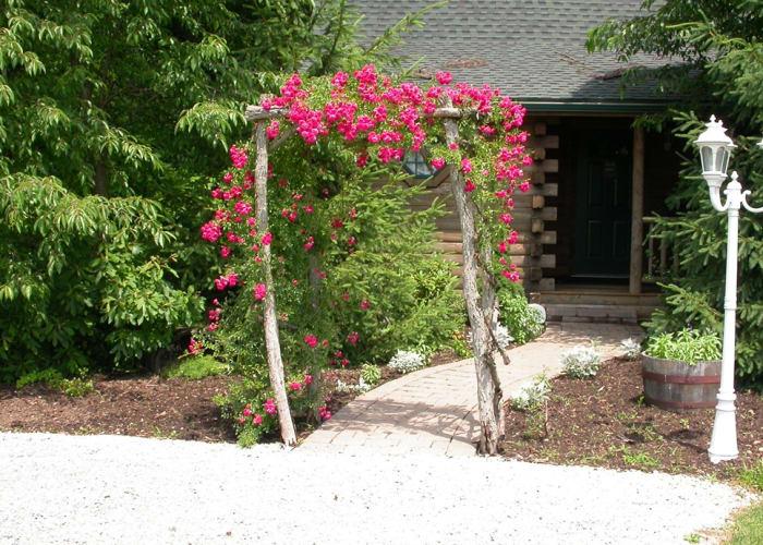 Wild Rose entrance
