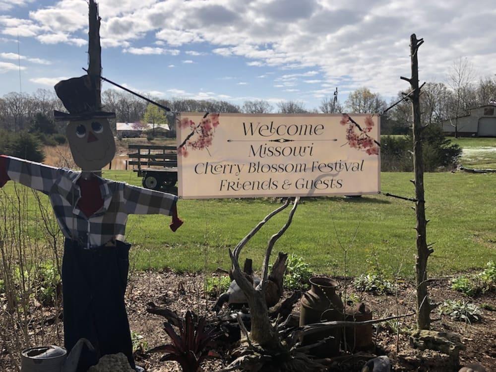 The 2021 Missouri Cherry Blossom Festival In The Books.....