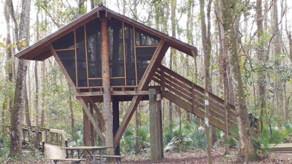 Girl Scouts Glamping in Green Cove Springs, Florida